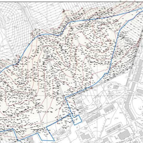 Topographic Surveys